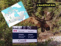 Parc national Jasper au Canada