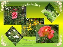La mélodie des fleurs