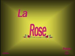 PPS La rose rouge