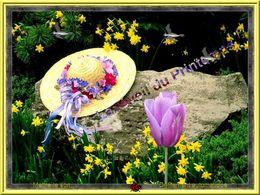 Le réveil du printemps création