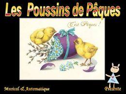 Les poussins de Pâques 2012