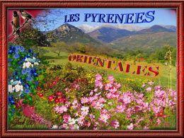 PPS Les Pyrénées orientales