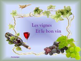 Les vignes et le bon vin