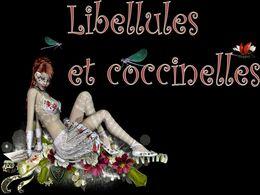 Libellules et coccinelles