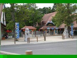 Parc de Beauval 1er volet