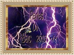 Perles du bac 2010