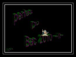 Diaporama Perles du bac 2010 II