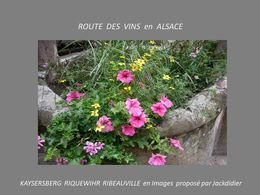 PPS Route des vins en Alsace