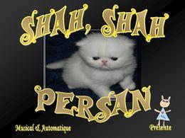 PPS Shah Shah Persan