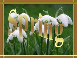 pps Spring