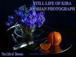 Still life of Kira russian photograph