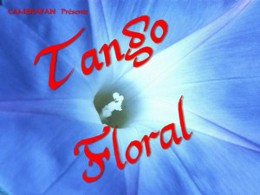 Tango floral