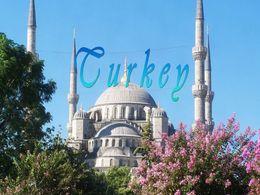 PPS Turkey