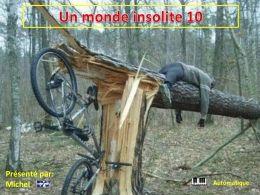 Un monde insolite 10