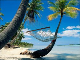 Vacances de rêve