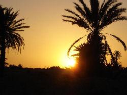 Djerba - Tozeur